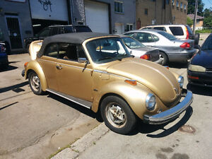 Super Beetle Karma 1974