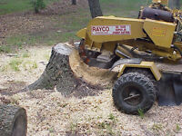 Affordable Stump grinding/removal
