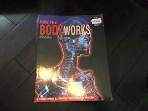 Body works - human body anatomy book