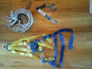 Safety harness and line