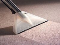 Professional Carpet and Upholstery Cleaning. Notice the difference immediately. Good Rates.