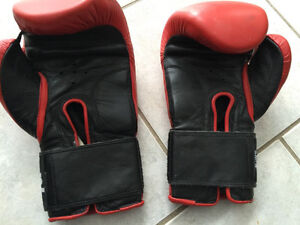 BOeS Boxing Gloves 12 oz. $40 London Ontario image 2