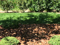 Edmontons top Landscaping choice for lawns, ponds and gardens