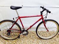 Specialized HardRock GSX Retro Mountain Bike - SERVICED
