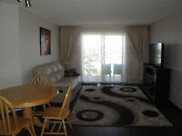 Furnished 2 +2 in South East Edmonton.Available June 1, 2015