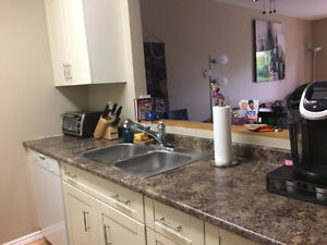 1 Large Bedroom available in a 2 Bedroom Condo Kingston Kingston Area image 2