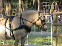 Large Cob Ideal Luxe Leather Driving Harness