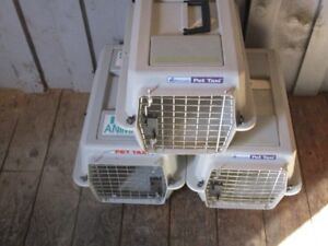 Three -- Small Petmate Pet Carriers -- Like New
