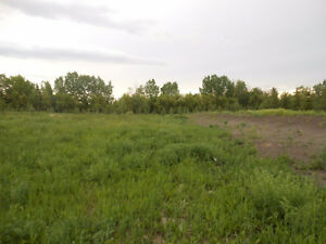 Lot in Goudreau Estates in Leduc County Strathcona County Edmonton Area image 1