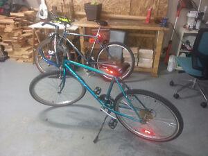 Lot de 2 vélos