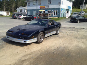 1986 Trans am 305 5.0 This car is an antique and collector car