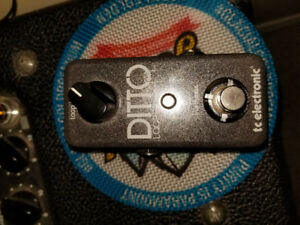 Ditto looper 80$