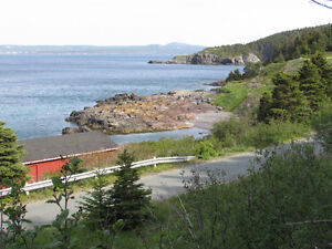 BACON COVE RD, AWESOME OCEAN VIEWS..BACON COVE.. St. John's Newfoundland image 9