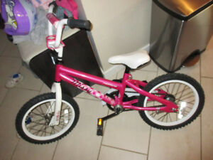 "Norco Lil Missy 16"" with training wheels"