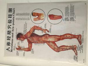 Bast massage treatment