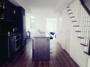 Furnished Room For Rent Downtown Toronto (close to Ryerson, Ocha