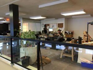 Open / Co-working Space