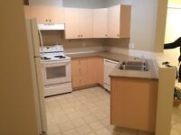 Roommate wanted for 2 bedroom apartment