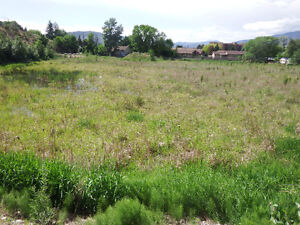 REDUCED! Multi-Family Zone 2.83 Acre Lot MLS#160839