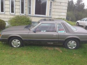 1983 Ford Mustang (for sale or trade)
