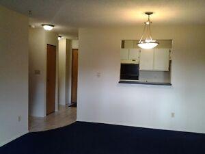 1 Bedroom Condo for Rent in Tumbler Ridge