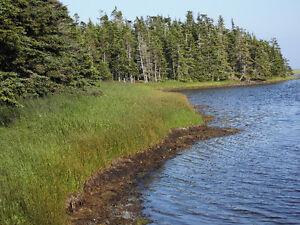 Waterfront lot in Grand River with Ocean view - Cape Breton - NS