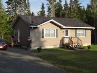 Reduced Price - New Open Concept House (KELLY CREEK AREA)