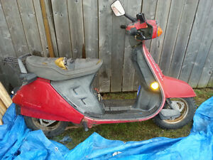 Vintage 2 stroke Honda Scooter with LOTS OF PARTS