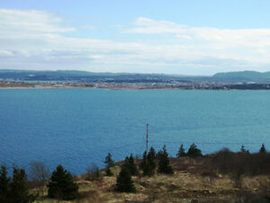Anthonys Rd - Spaniards Bay - MLS 1101128/1101127 St. John's Newfoundland image 3