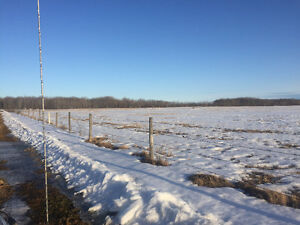 480 acres of hay and pasture Fairview
