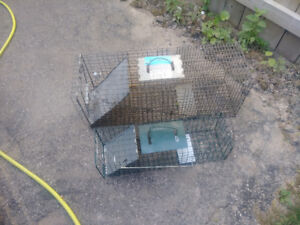 2 animal traps for sale