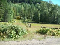 Land for Sale in the Kootenays