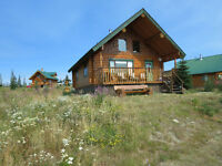 Log Cabin at Paradise Lake-price reduced