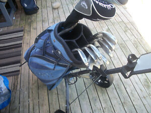 LADIES KING COBRA GOLF CLUBS IRONS ,WOODS.PUTTER ,PULL CART