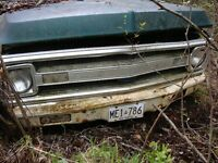 Old Chevrolet GMC truck located in the bush