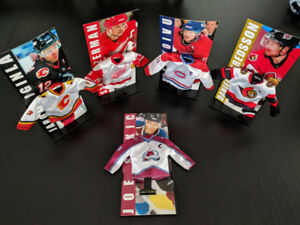 Mini Hockey Jersey Collection