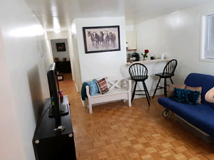 Beautiful 3 1/2 apartment for rent August 16th!