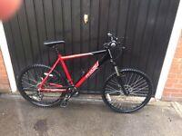 Apollo phase mountain bike