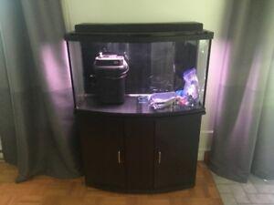 Aquarium 45 gallons & Meuble