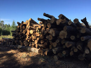 Firewood logs for SALE!
