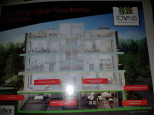 New townhouse for sale in Morning side & Sheppard Ave East