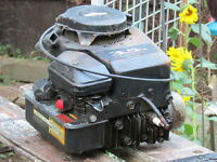 Briggs and Stratton Lawnmower Engine