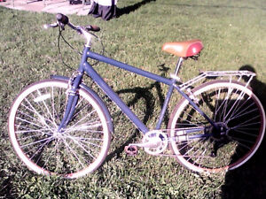 Cruiser bike  $110 Cambridge Kitchener Area image 2