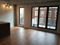 Brand new 1 bedroom apartment Old Montreal - 1,270$