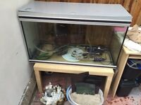 3ft Rena 240ltr fish tank & stand + all equipment £225 OPEN TO OFFERS