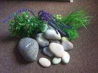 Fish tank Plants & stones