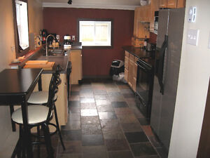 Elegant Furnished House in Downtown (Georgetown) Inclusive St. John's Newfoundland image 2