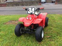 Buzz 50cc kids quad (race tuned) (motocross)