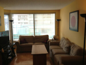 Beautiful 4.5 apartment Downtown Montreal (near Concordia)