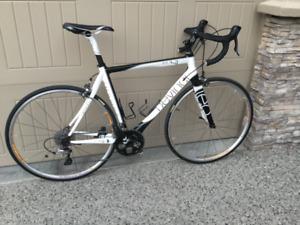 Devinci Full Carbon Road Bike 54 cm